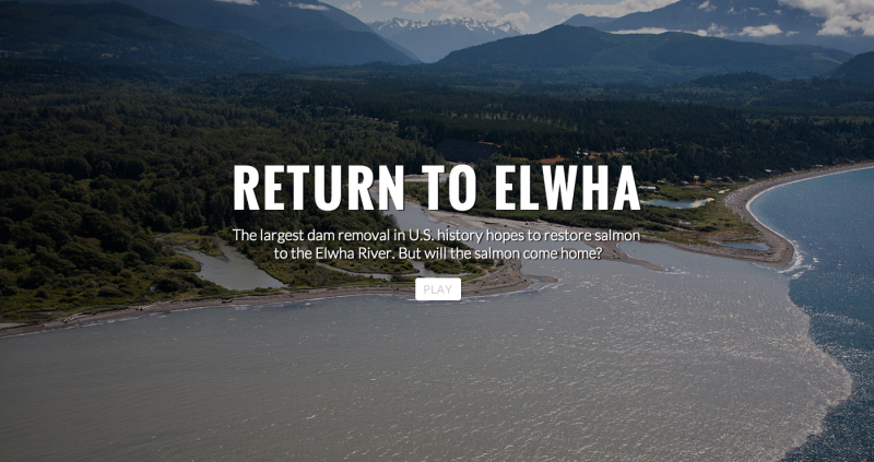 img via RETURN TO ELWHA